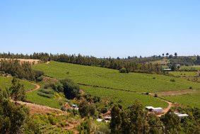 Itata Valley