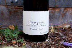 Chassorney-Bourgogne-Hautes-Cotes-de-Beaune-Rouge-Puits-de-Chaux