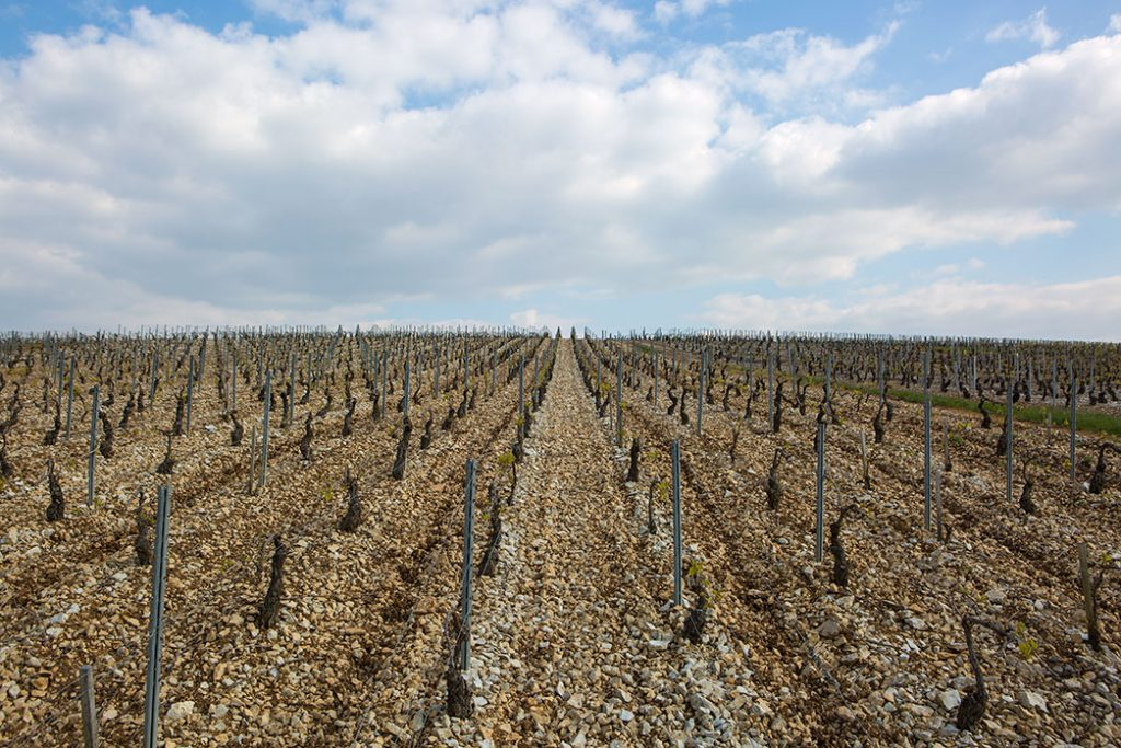 Christophe Vineyard
