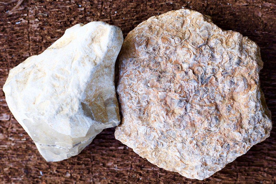 Portlandian and Kimmeridgian Limestones
