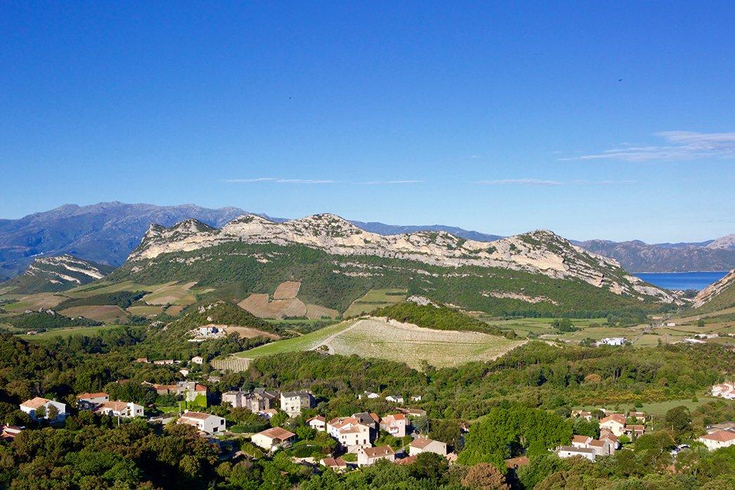 ADN Vineyards Corsica