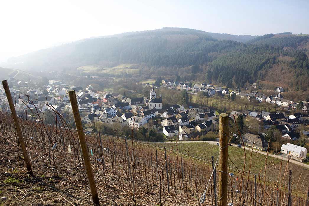 Vineyards Von Beulwitz