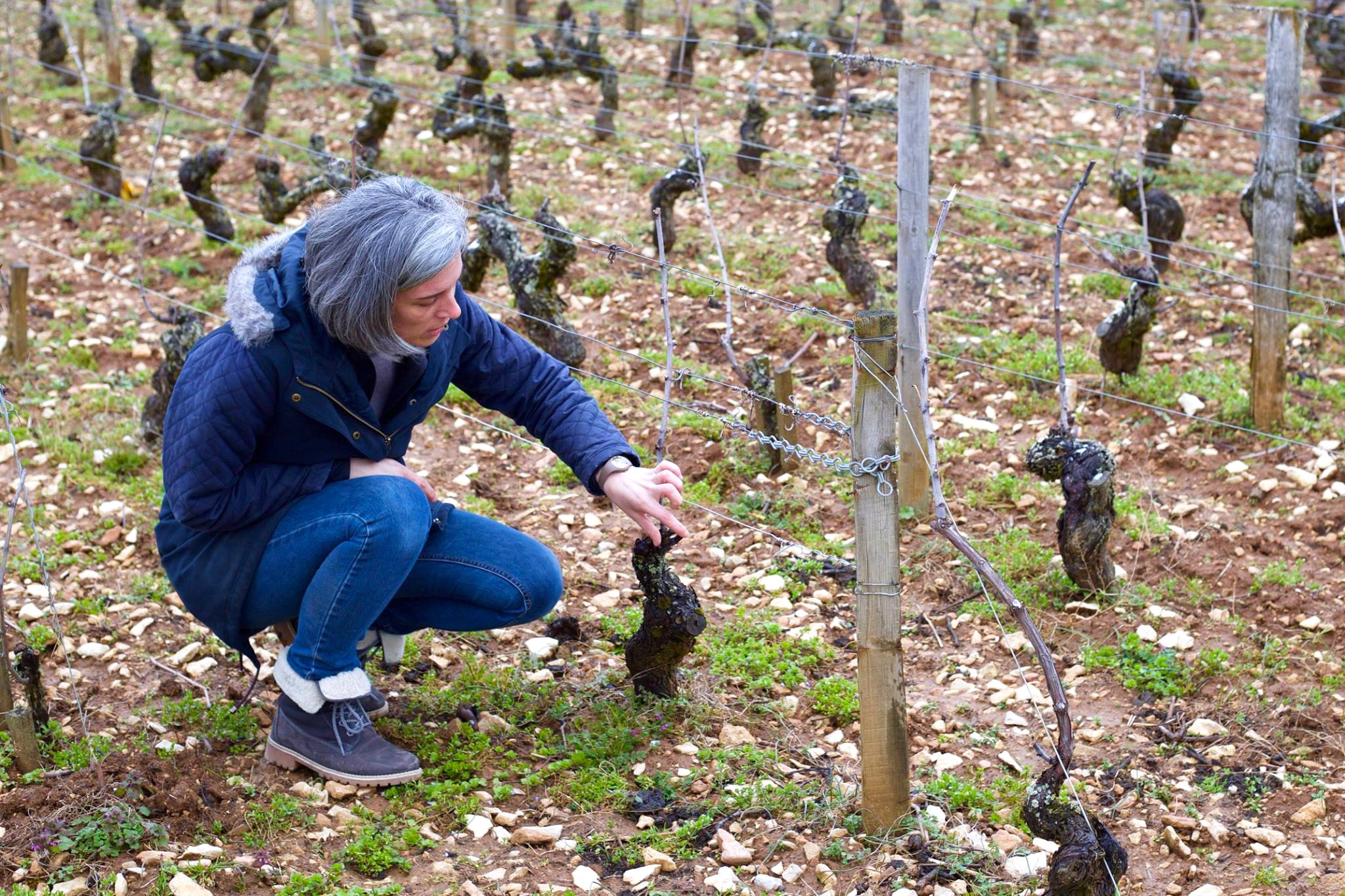 Anne Moray in the vineyard